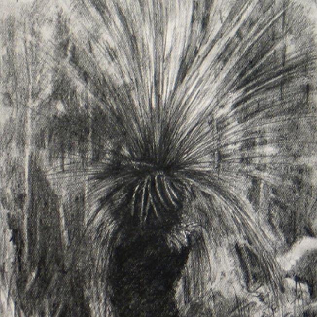 Kevin Dagg- Tree Grass
